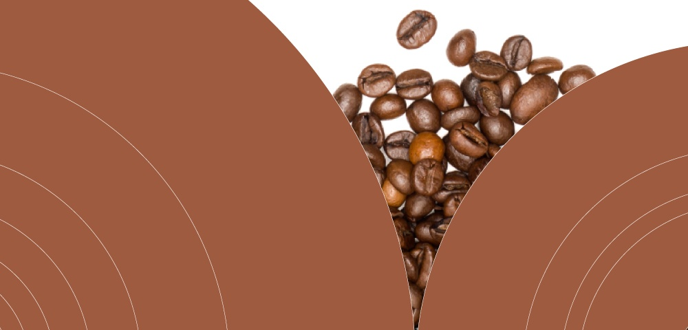 Data Visualization_Infographic_Global Coffee Market